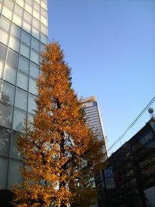 Photo3_2